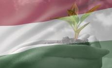 Magyarok! A boldog élet alapja a nagycsaládi összefogás és az önellátás