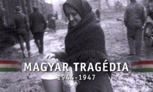 Vajdaság 1944–45 : Népirtás volt, vagy valami más?