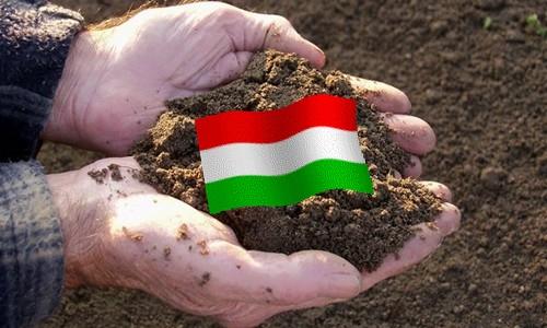 magyar_fold 2