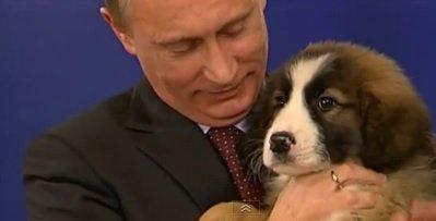 """Pravda: """"Putyin megnyerte a világbajnokságot"""""""